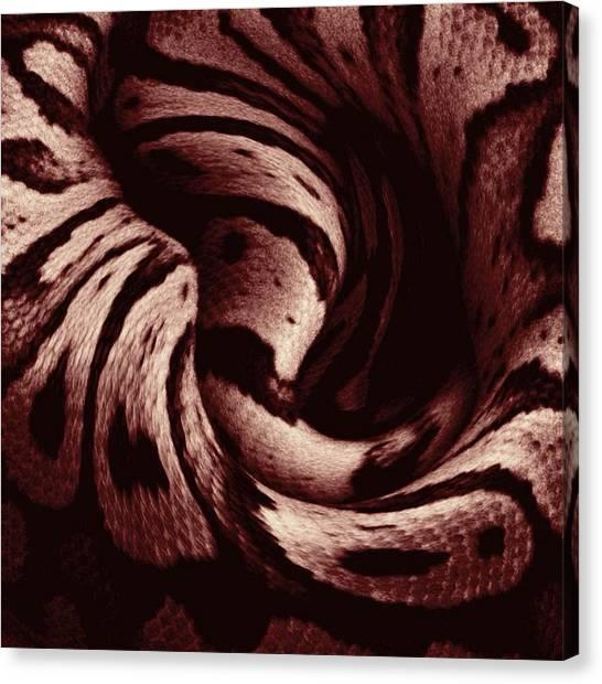 Ball Pythons Canvas Print - Ball Python Complication by Sierra Andrews