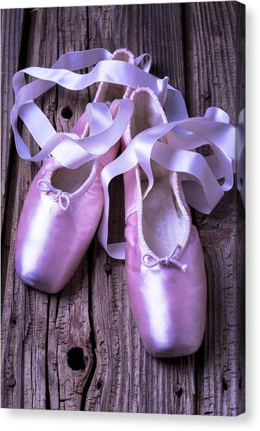 Ballet Shoes Canvas Print - Ballet Slippers by Garry Gay