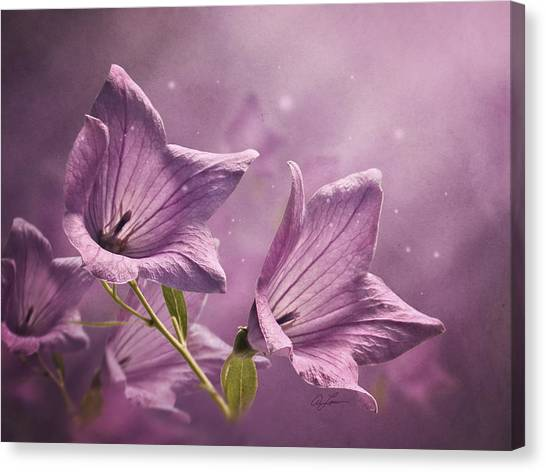 Balloon Flowers Canvas Print