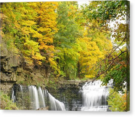 Balls Falls In Autumn Color Canvas Print