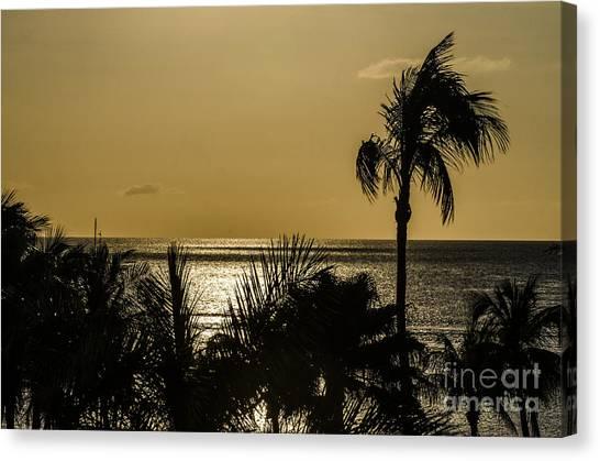 Balmy Beach Canvas Print