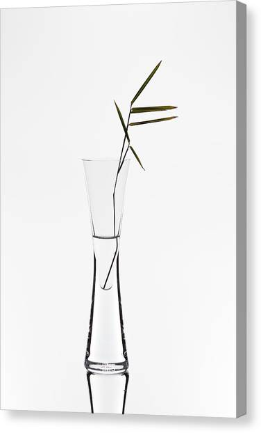 Bamboo Canvas Print - Bamboo by Christian Pabst