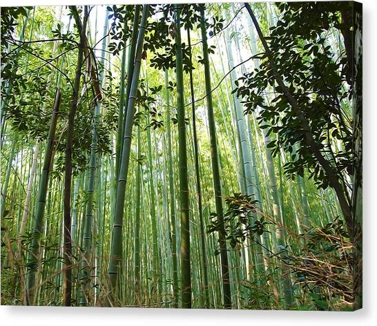 Sagano Bamboo Forest Canvas Print - Bamboo Forest 2 by Jeelan Clark
