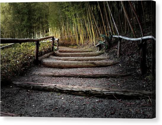 Bamboo Garden Canvas Print