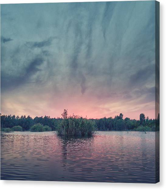 Foggy Forests Canvas Print - Bamboo Lake by Stelios Kleanthous