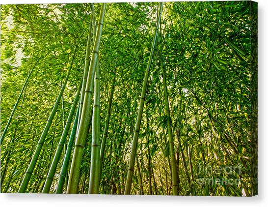 Bamboo Canvas Print by Nur Roy