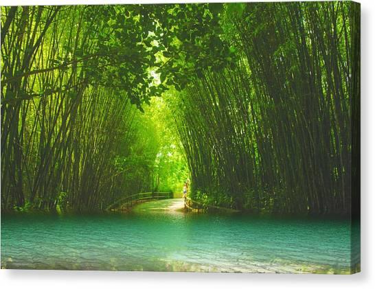 bamboo path to  Blue Lagoon  Canvas Print