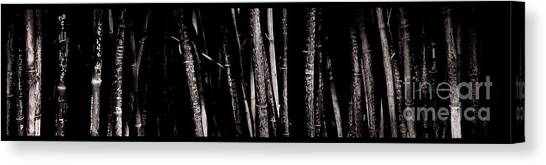 Bamboo Canvas Print by Ron Smith