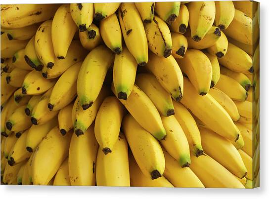 Belize Canvas Print - Bananas At The Saturday Market, San by William Sutton