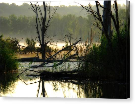 Banner Marsh Spring Canvas Print