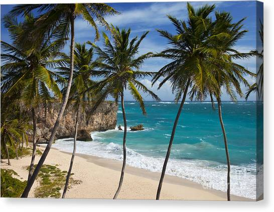 Barbados Beach Canvas Print