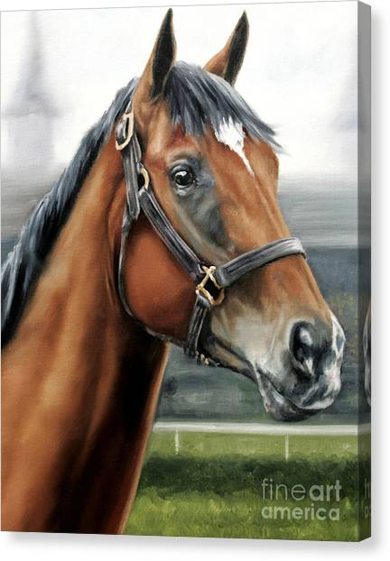 Barbaro At Churchill Downs Canvas Print by Thomas Allen Pauly
