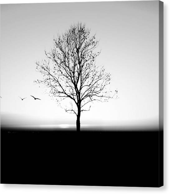 Bare Tree On Silhouette Field Against Canvas Print by Marc Stapel / Eyeem