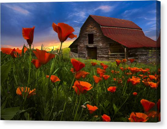 Prairie Sunrises Canvas Print - Barn In Poppies by Debra and Dave Vanderlaan