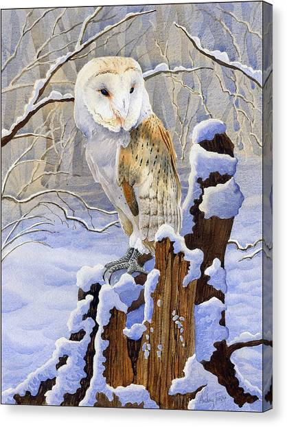 Barn Owl In Snow Canvas Print by Anthony Forster
