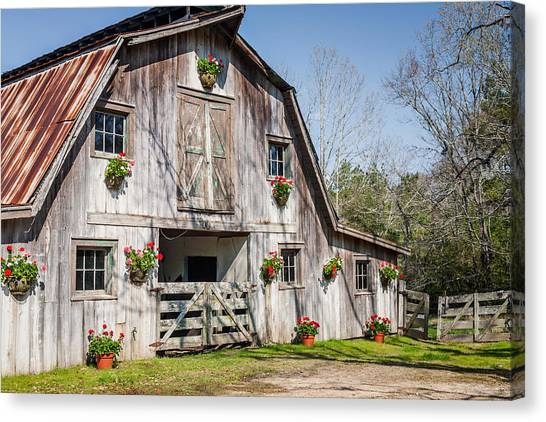 Barn With Flowers Canvas Print by Terry Ellis