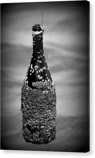 Barnacles And Wine Canvas Print