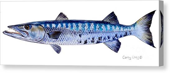 Tiger Sharks Canvas Print - Barracuda by Carey Chen