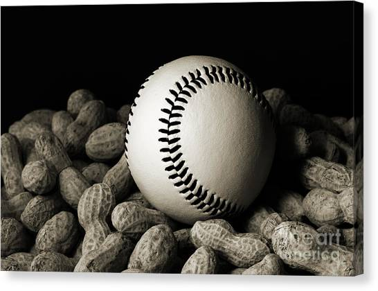 Andee Design Bw Canvas Print - Baseball Season Bw by Andee Design