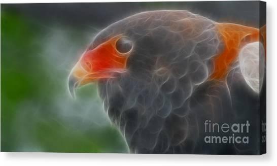 Bataleur Eagle Canvas Print - Bataleur Eagle-4881-fractal by Gary Gingrich Galleries
