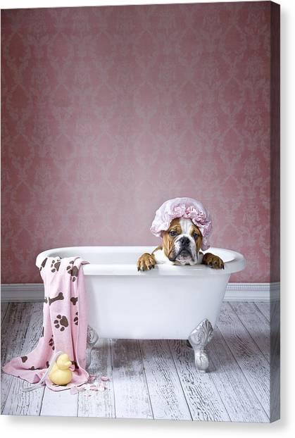 Doggy Canvas Print - Bath Time by Lisa Jane