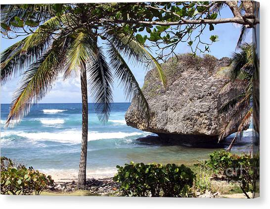 Bathsheba No11 Canvas Print