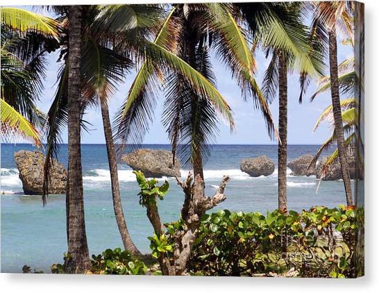 Bathsheba No7 Canvas Print