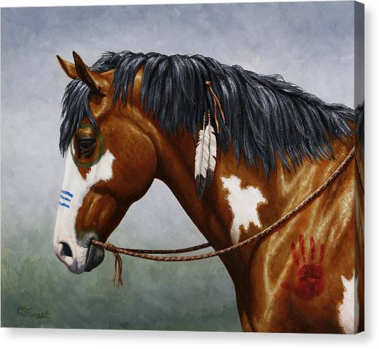 War Horse Canvas Print - Bay Native American War Horse by Crista Forest