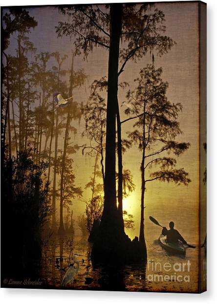 Bayous Canvas Print - Bayou Sunrise by Lianne Schneider