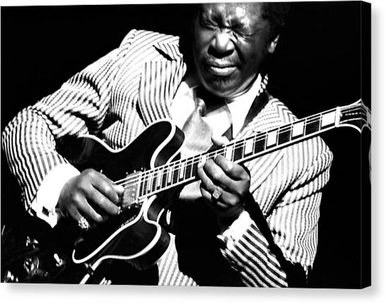 B.b. King - Squeezing Lucille Canvas Print