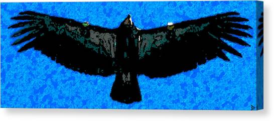 Condors Canvas Print - Flight Of The Condor by David Lee Thompson