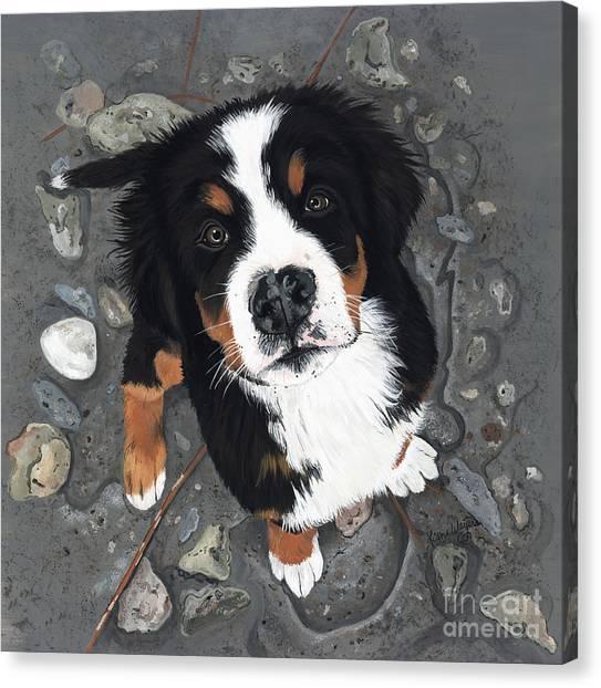 Bernese Mountain Dogs Canvas Print - Beach Baby by Liane Weyers