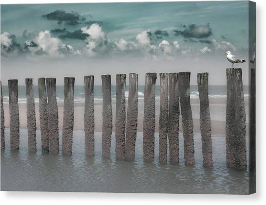 Seagulls Canvas Print - Beach Bars by Bernardine De Laat