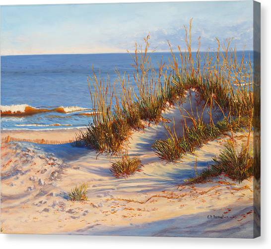 Beach Dune, Atlantic Ocean Beach Canvas Print by Elaine Farmer
