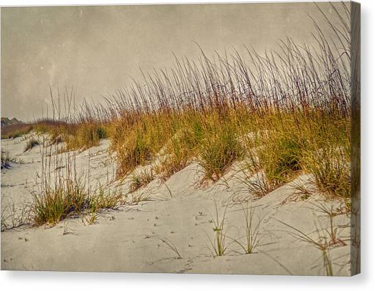 Beach Grass And Sugar Sand Canvas Print