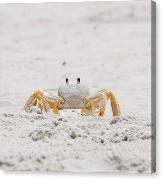 Beach Guard Canvas Print