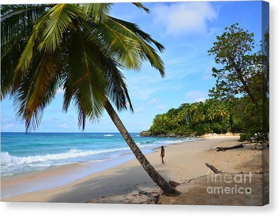 Beach In Dominican Republic Canvas Print