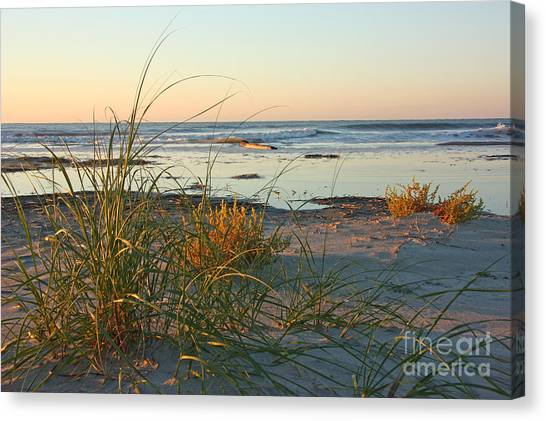 Beach Morning Canvas Print