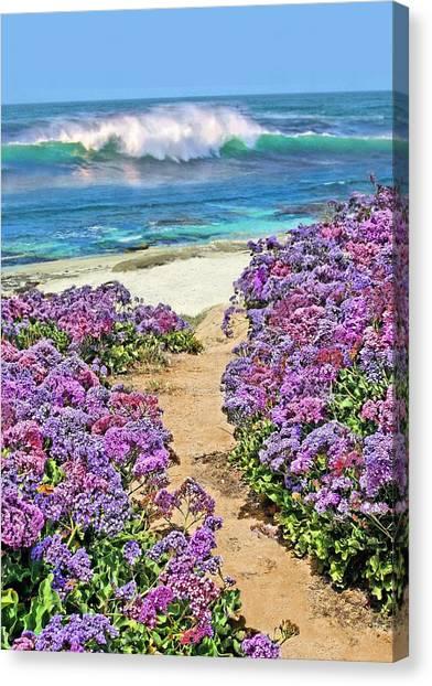 Beach Pathway Canvas Print