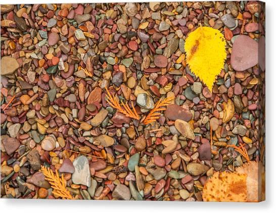 Beach Pebbles Of Montana Canvas Print