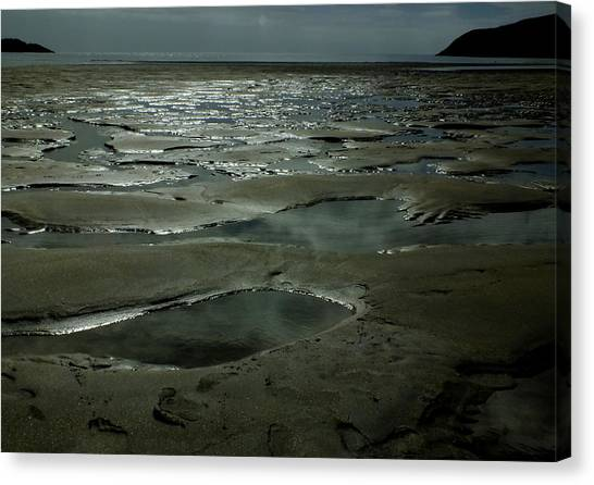 Beach Pools Canvas Print by Phil Darby