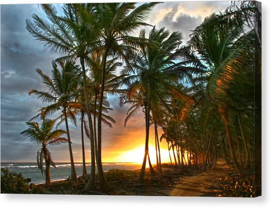 Beach Road Canvas Print