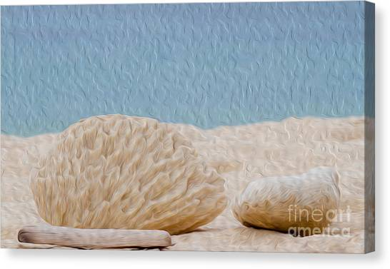 Beach Rocks At Seven Mile Beach In Grand Cayman Canvas Print by Kenneth Montgomery
