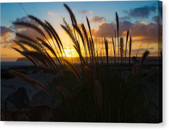 Beach Sunset Canvas Print by Marc Bottiglieri