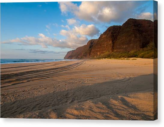 Beach Tracks Canvas Print