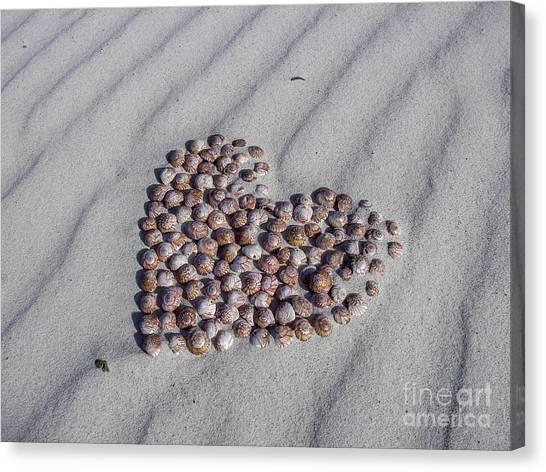 Beach Treasure Canvas Print