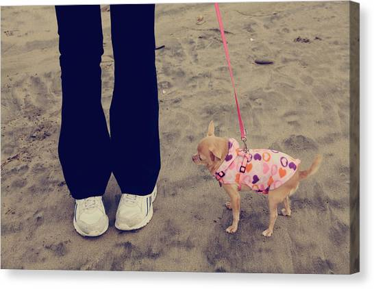 Dog Walking Canvas Print - Beach Walk by Laurie Search