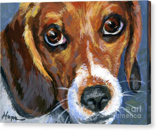 Beagle Canvas Print by Hope Lane