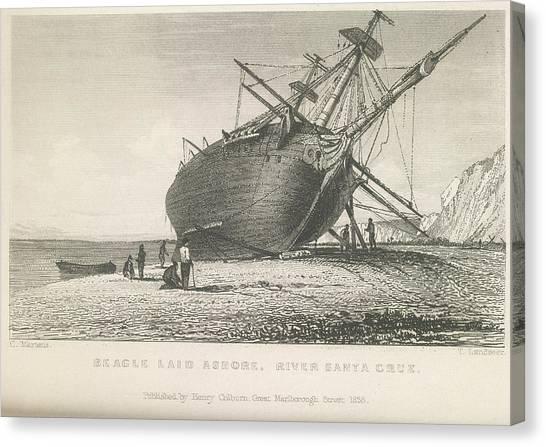 Landseer Canvas Print - Beagle Laid Ashore by British Library