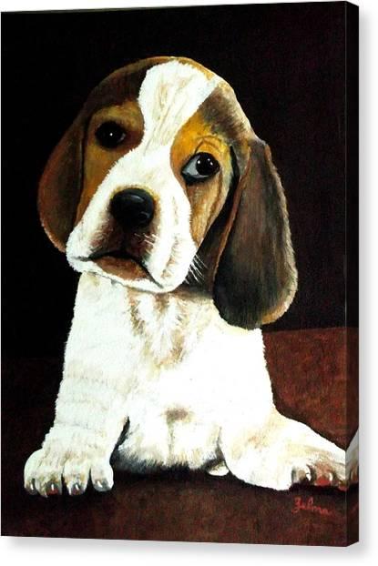 Beagle Puppy Canvas Print by Zelma Hensel